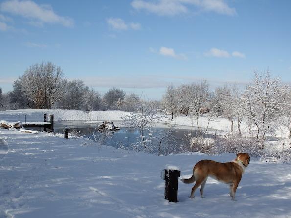 Nina en la nieve